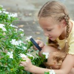 school gardening